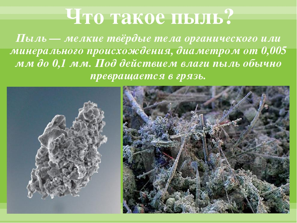 Что такое пыль? Пыль — мелкие твёрдые тела органического или минерального про...