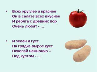 Всех круглее и краснее Он в салате всех вкуснее И ребята с древних пор Очен