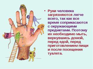 Руки человека загрязняются легче всего, так как все время соприкасаются с окр