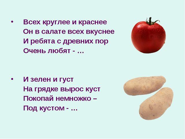Всех круглее и краснее Он в салате всех вкуснее И ребята с древних пор Очен...