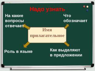 Надо узнать Имя прилагательное Что обозначает Как выделяют в предложении Роль