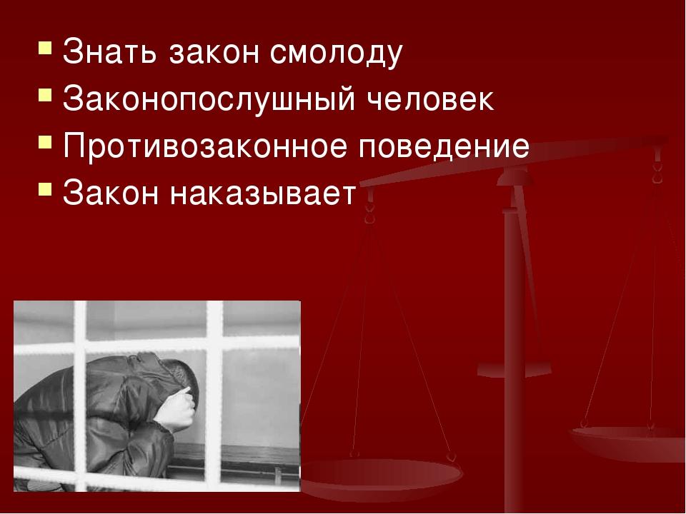 Знать закон смолоду Законопослушный человек Противозаконное поведение Закон н...