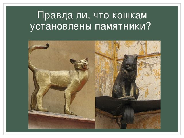 Правда ли, что кошкам установлены памятники?