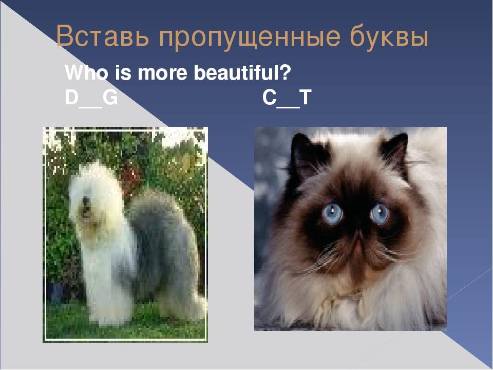 Вставь пропущенные буквы Who is more beautiful? D__G C__T
