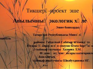 Тикшерү-проект эше Авылымның экологик хәле Эшне башкарды:  Татарстан Респ