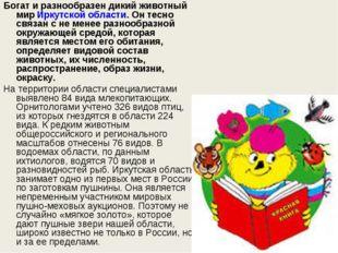 Богат и разнообразен дикий животный мирИркутской области. Он тесно связан с