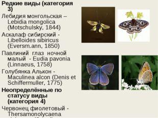 Редкие виды (категория 3) Лебидия монгольская – Lebidia mongolica (Motschulsk