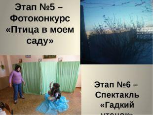 Этап №5 – Фотоконкурс «Птица в моем саду» Этап №6 – Спектакль «Гадкий утенок»