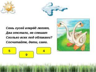 Семь гусей вперёд летят, Два отстали, не спешат Сколько всех под облаками? Со