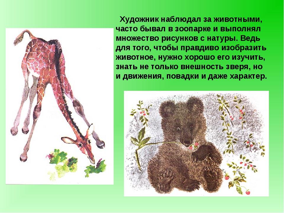 Художник наблюдал за животными, часто бывал в зоопарке и выполнял множество...