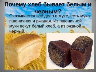 Почему хлеб бывает белым и черным? Оказывается все дело в муке, есть мука пше