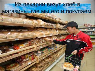 Из пекарни везут хлеб в магазины, где мы его и покупаем