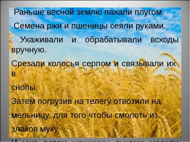 Раньше весной землю пахали плугом. Семена ржи и пшеницы сеяли руками. Ухажив...