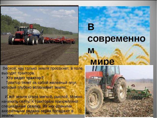 В современном мире Сначала хлеборобы готовят почву. Осенью они, используя сп...