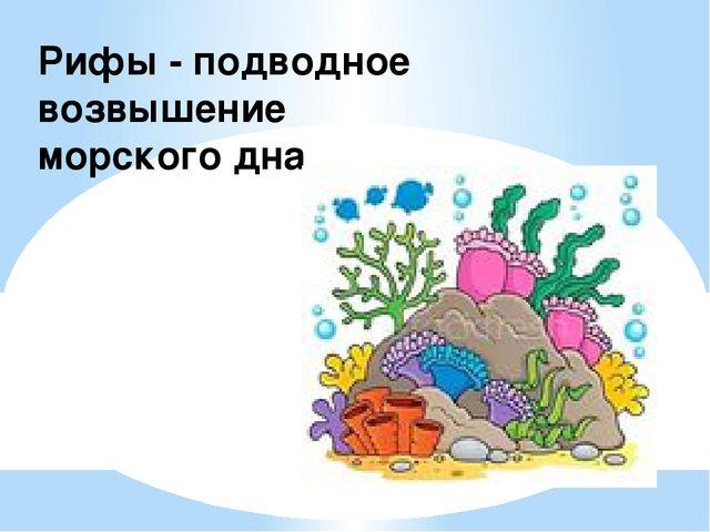 Рифы - подводное возвышение морского дна