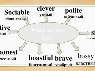 What are you like? Sociable общительный clever умный polite вежливый bossy вл