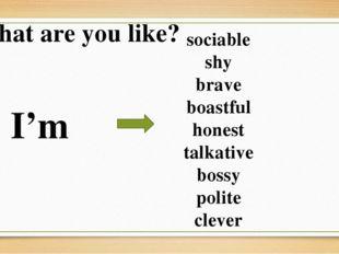 What are you like? I'm sociable shy brave boastful honest talkative bossy pol