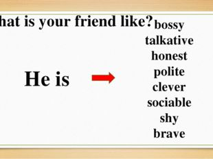 What is your friend like? He is bossy talkative honest polite clever sociable