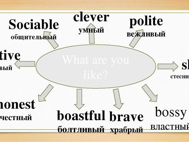 What are you like? Sociable общительный clever умный polite вежливый bossy вл...