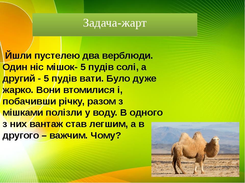 Задача-жарт  Йшли пустелею два верблюди. Один ніс мішок- 5 пудів солі, а др...