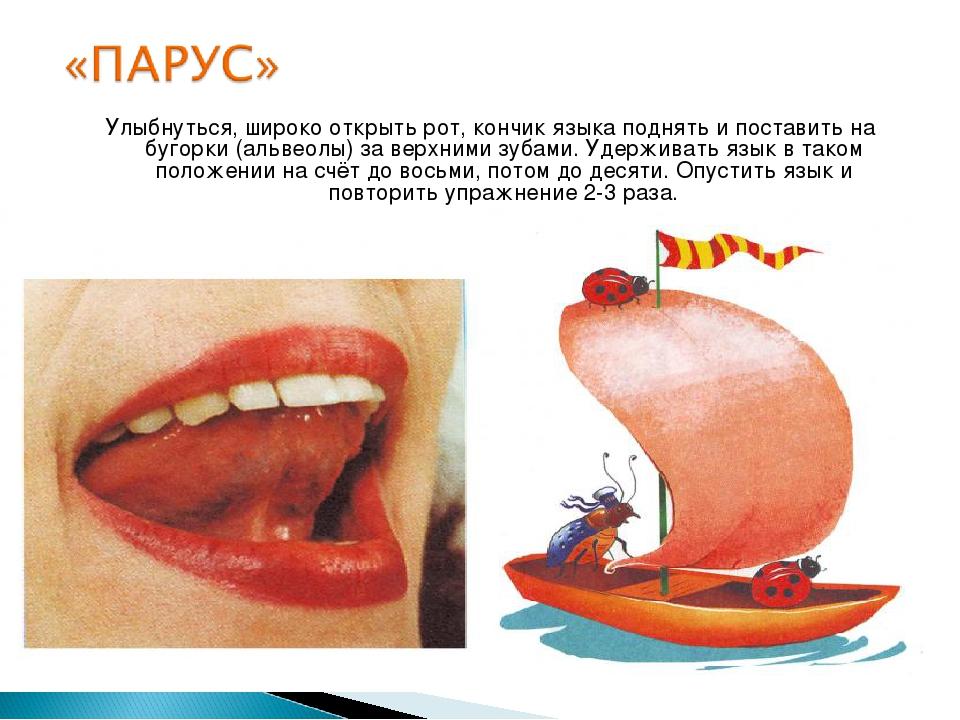 Улыбнуться, широко открыть рот, кончик языка поднять и поставить на бугорки (...