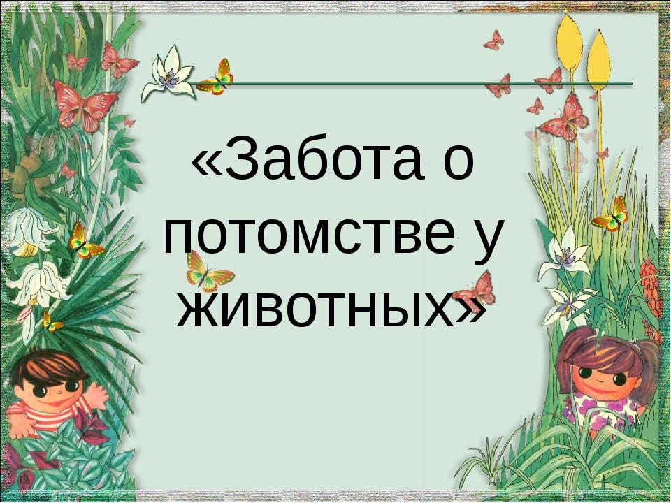 «Забота о потомстве у животных»