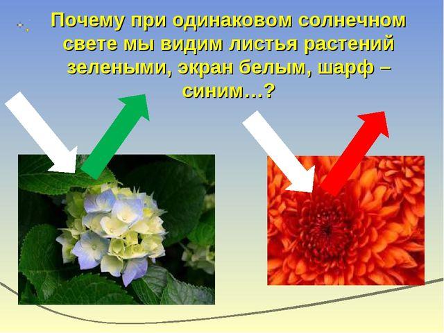 Почему при одинаковом солнечном свете мы видим листья растений зелеными, экра...