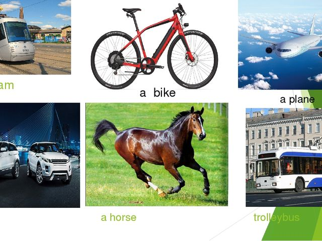 a tram a car a horse trolleybus a plane a bike