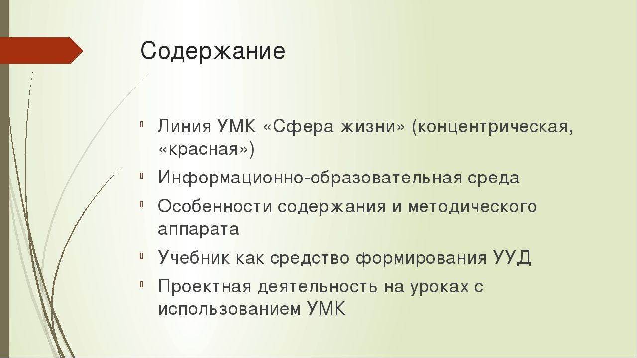 Содержание Линия УМК «Сфера жизни» (концентрическая, «красная») Информационно...