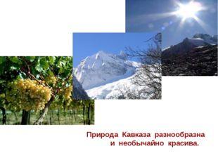 Природа Кавказа разнообразна и необычайно красива.