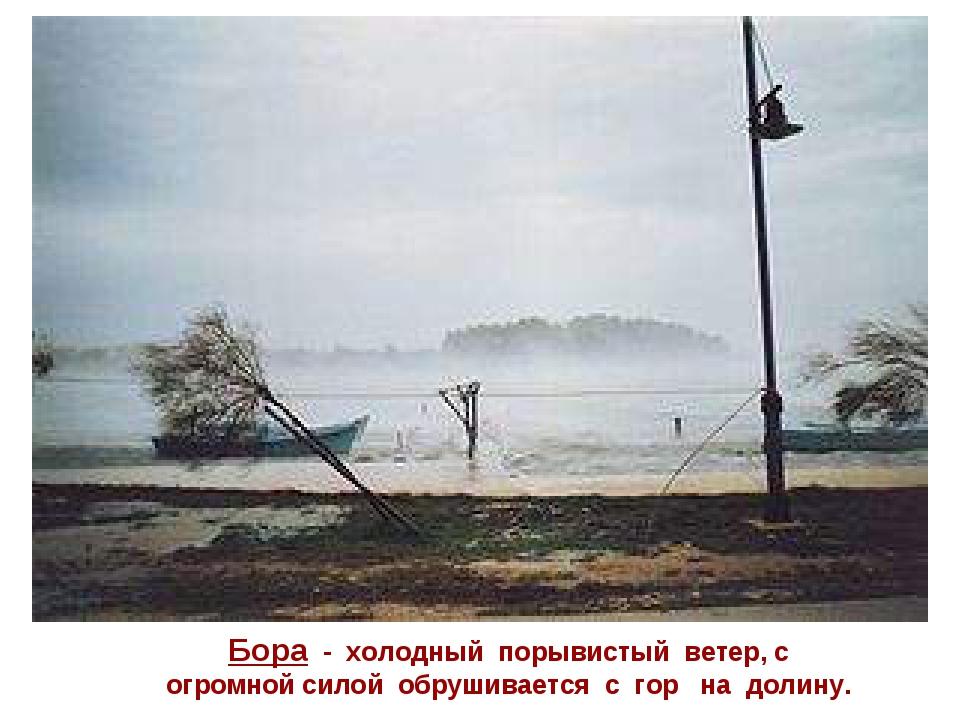 Бора - холодный порывистый ветер, с огромной силой обрушивается с гор на доли...