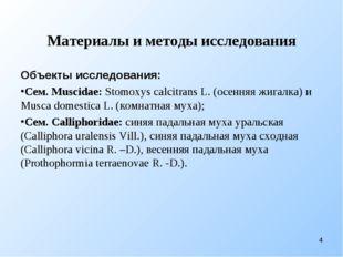 Материалы и методы исследования Объекты исследования: Сем. Muscidae: Stomoxys