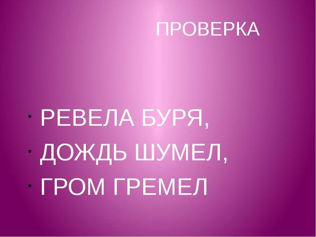 ПРОВЕРКА РЕВЕЛА БУРЯ, ДОЖДЬ ШУМЕЛ, ГРОМ ГРЕМЕЛ