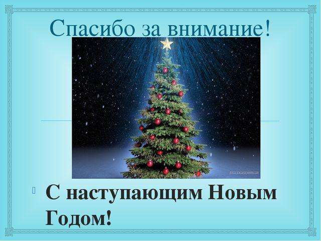 Спасибо за внимание! С наступающим Новым Годом! 