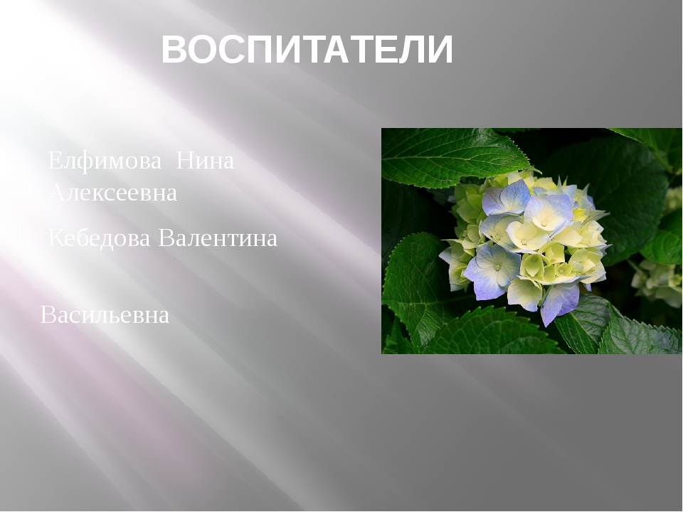 ВОСПИТАТЕЛИ Елфимова Нина Алексеевна Кебедова Валентина Васильевна