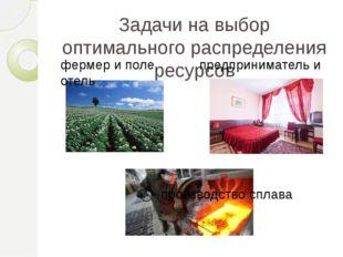 Задачи на выбор оптимального распределения ресурсов фермер и поле предпринима