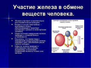 Участие железа в обмене веществ человека. Железо участвует в окислительно-вос