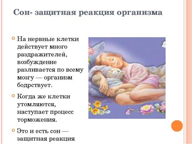 Сон- защитная реакция организма На нервные клетки действует много раздражител...