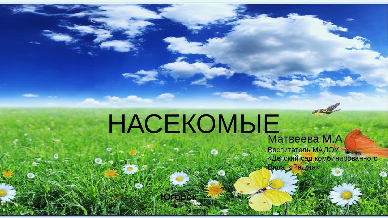 НАСЕКОМЫЕ Матвеева М.А Воспитатель МАДОУ «Детский сад комбинированного Вида «...