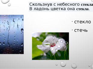 Скользнув с небесного стекла, В ладонь цветка она стекла. стекло стечь