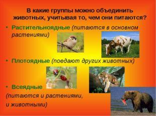 В какие группы можно объединить животных, учитывая то, чем они питаются? Раст