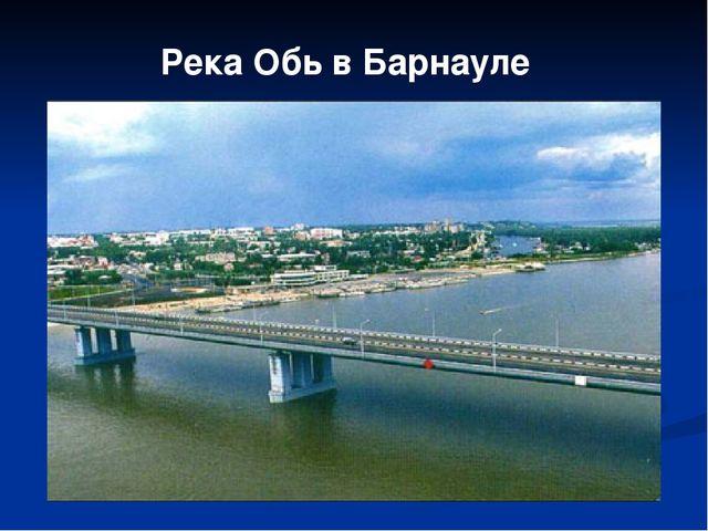 Река Обь в Барнауле