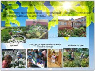 Предметно–пространственная развивающая среда, позволяющая успешно формироват
