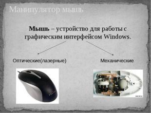 Манипулятор мышь Мышь – устройство для работы с графическим интерфейсом Windo