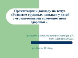 Презентация к докладу на тему: «Развитие трудовых навыков у детей с ограниче