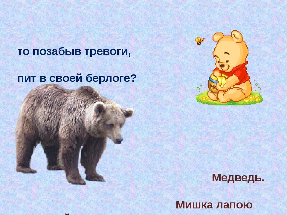 Кто позабыв тревоги, Спит в своей берлоге? Медведь. Мишка лапою мохнатой Не с...