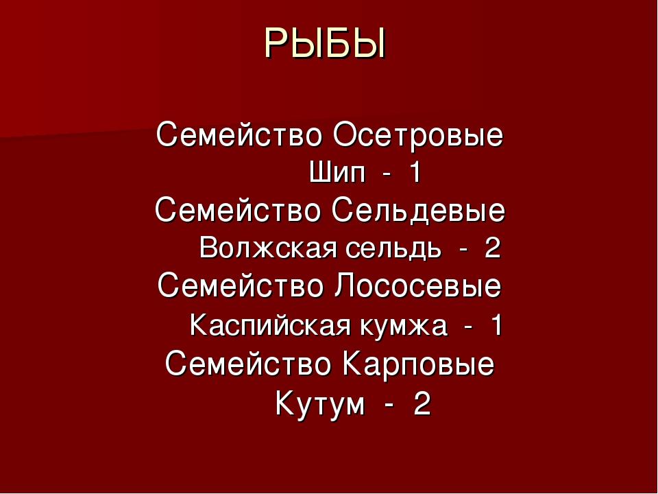 РЫБЫ Семейство Осетровые Шип - 1 Семейство Сельдевые Волжская сельдь - 2 Семе...