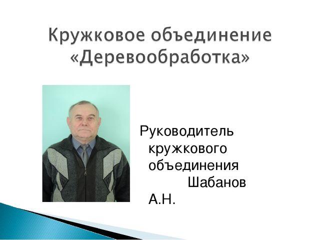 Руководитель кружкового объединения Шабанов А.Н.