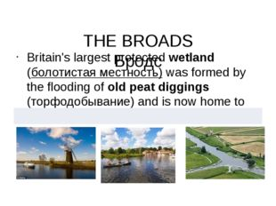 THE BROADS Бродс Britain's largest protected wetland (болотистая местность)