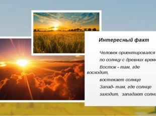 Человек ориентировался по солнцу с древних времён: Восток - там, где восходи